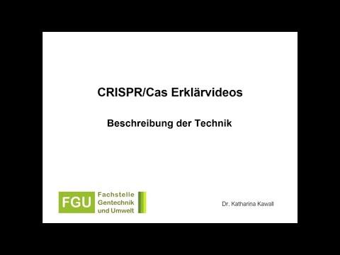 CRISPR/Cas-Erklärvideo 1: Beschreibung der Technik