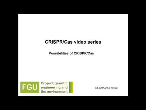 CRISPR/Cas Explainer Video 2: Description of the Possibilities