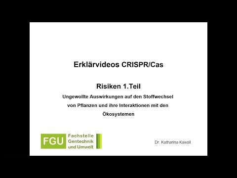CRISPR/Cas-Erklärvideo 3: Risiken (Teil 1)